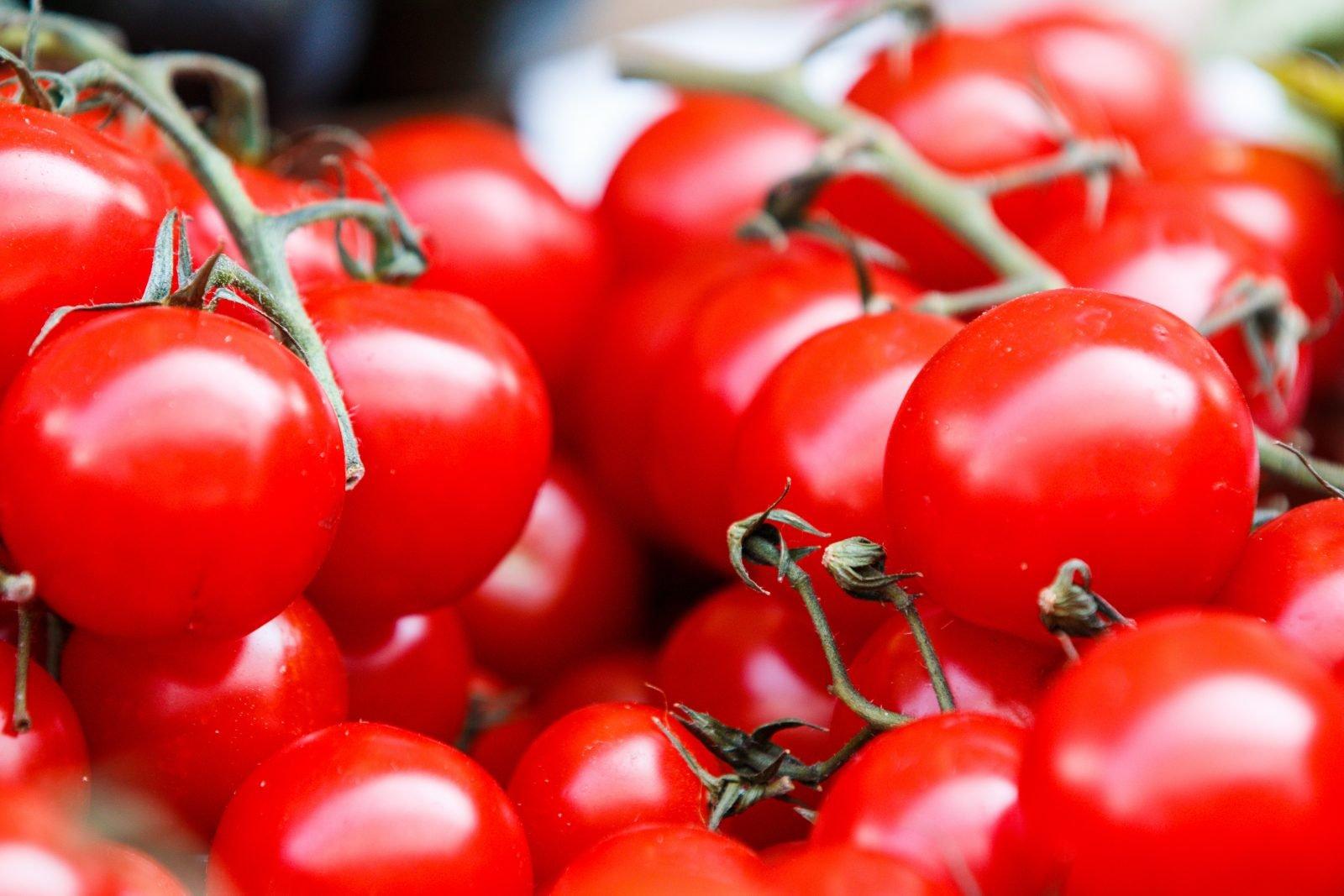 Comment produire des tomates plus sucrées ?