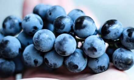 Comment éplucher des raisins facilement ?