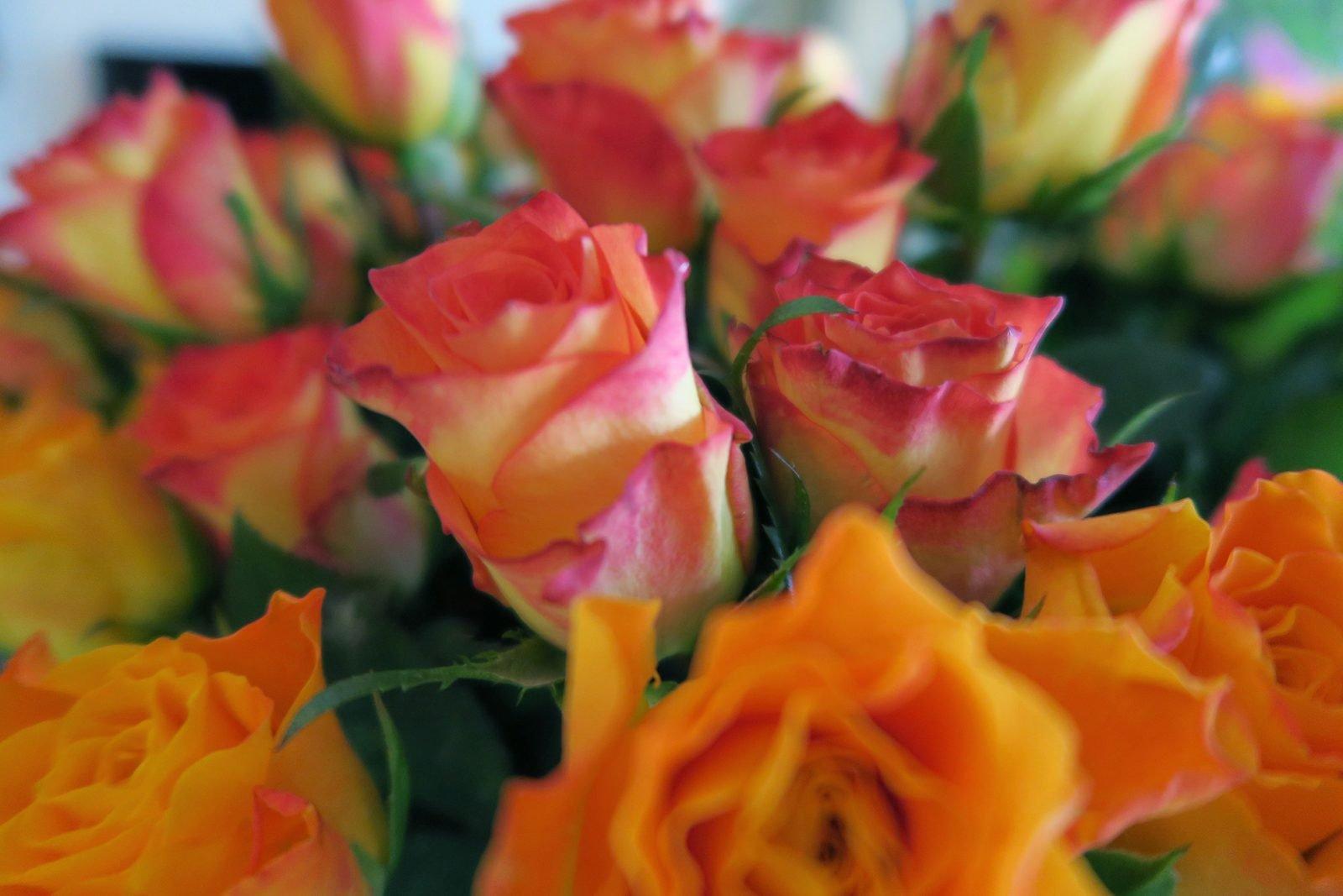 Comment conserver des fleurs coupées plus longtemps ?