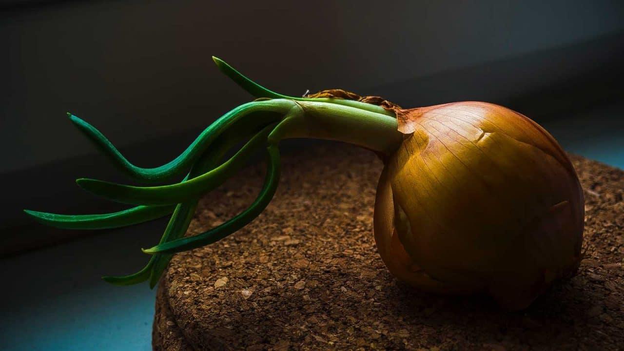 Comment éplucher des oignons sans pleurer ?